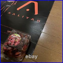 Ultra Rare Aaliyah 2001 Original Us Promo Lp/cd Cover Art Poster + More